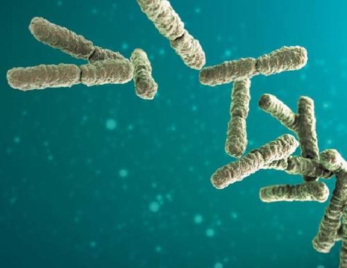 Desinfektion Organismen