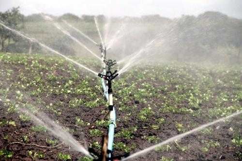Bewässerung Acker 500